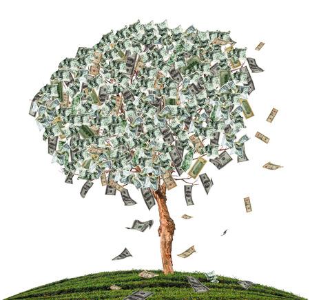 raise funding through alternative finance