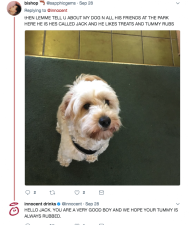 Bring your dog to work day tweets