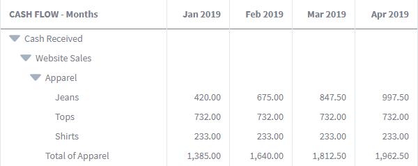 detailed cash flow report