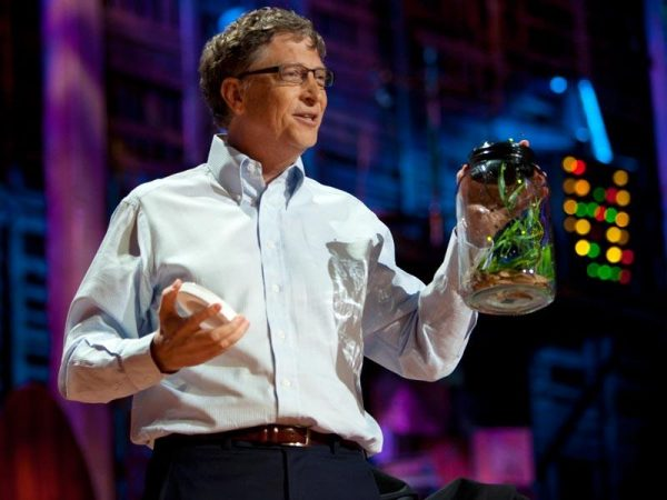 Bill Gates releasing mosquitoes at TED talk