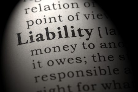 limited liability director
